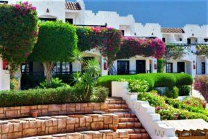 Verginia Sharm Hotel Египет
