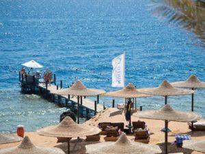 Otium Hotel Amphoras Sharm (ex.Shores Amphoras Resort) (регион - Шарм Эль Шейх) Египет