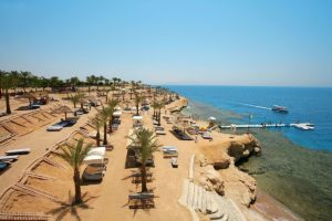 Grand Oasis Resort Sharm Шарм-эль-Шейх