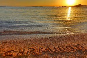 Charmillion Sea Life Resort (ex.Sea Life) (регион - Шарм Эль Шейх) Горящие туры