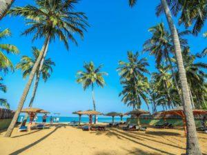 Club Palm Bay (регион - Маравила) Горящие туры