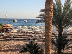 Novotel Beach Sharm El Sheikh Горящие туры